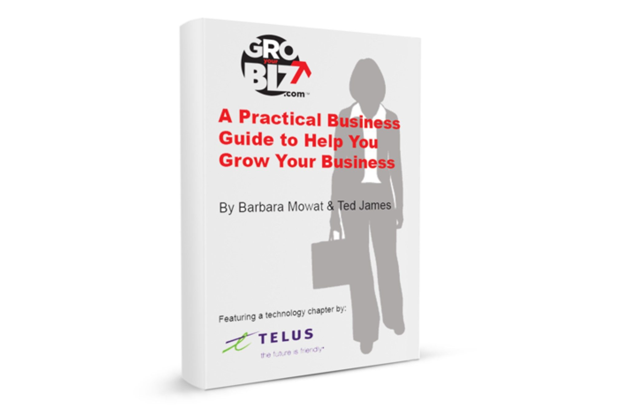 GroYourBiz E-Guide A Guide to Grow Your Business