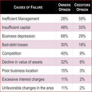 GroYourBiz Causes of Failure Chart
