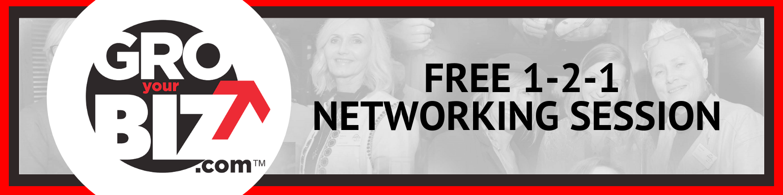 GroYourBiz 1-2-1 Networking Sessions